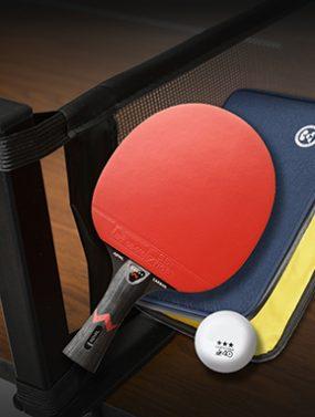 290x382 table tennis